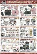 わちふぃーるどニュース1901B号